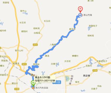 重庆永川茶山竹海