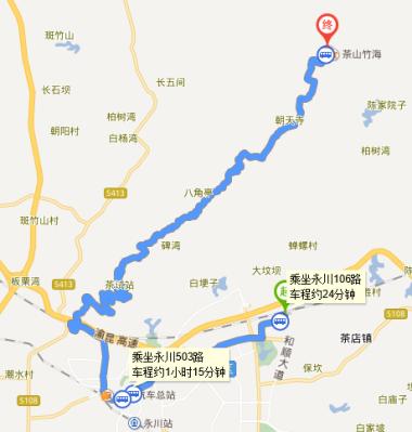 重庆永川茶山竹海2